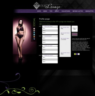 A concept design for The Bra Lounge VIP section of the website. Allows for customers to fill out a profile and save it for online shopping and send a wish list to others. Concept and design.